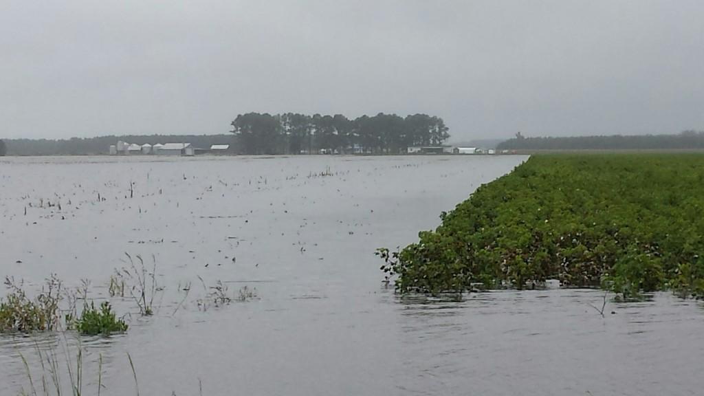 2015-flooding